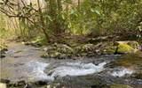 0 Jack's River - Photo 5