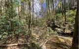 0 Jack's River - Photo 51