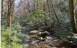 0 Jack's River - Photo 54