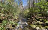 0 Jack's River - Photo 8