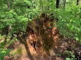 3 Hidden Valley Dr - Photo 7