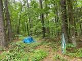 1582 Overlook Trail - Photo 43