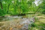 151 Olivers Pond - Photo 36