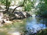 0 Wild Turkey Trail - Photo 7