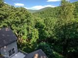 245 Sassafras Mountain Trl - Photo 46