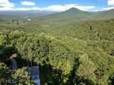 245 Sassafras Mountain Trl - Photo 48