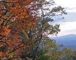 245 Sassafras Mountain Trl - Photo 76