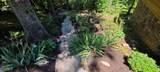111 Roaring Creek Rd - Photo 4