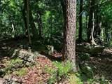 0 Auraria Ridge - Photo 3
