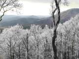 741 Wilderness - Photo 29
