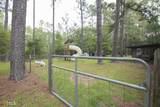 219 Wiregrass Rd - Photo 20