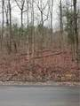 0 Flowery Branch Road - Photo 4