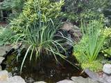 1112 Druid Hills Cir - Photo 29