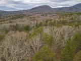 0 Bear Mountain Pass - Photo 16
