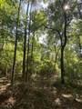 1240 Cypress Point Ln - Photo 44