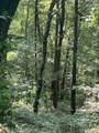 1240 Cypress Point Ln - Photo 48