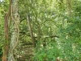 0 Cypress Lake Rd - Photo 5