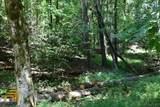 0 Fowler Creek Drive - Photo 9
