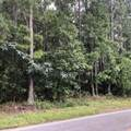0 Highway 36 - Photo 5