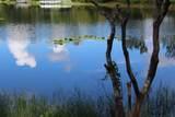 1240 Springlake Drive - Photo 58