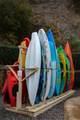3510 Blue Cypress Cove - Photo 37