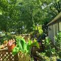 2240 East Lake Drive - Photo 40