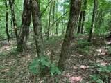 9 Bear Gap Road - Photo 10