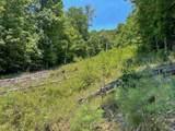 194 Toccoa Overlook Drive - Photo 4