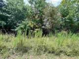0 Wild Turkey Trail - Photo 1