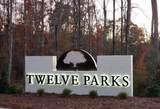 0 Twelve Parks Trail - Photo 3