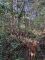 0 Pioneer Ridge - Photo 6