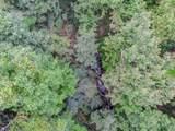 0 Cold Stream Trail - Photo 16