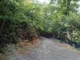 0 Cold Stream Trail - Photo 2