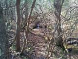 0 Cold Stream Trail - Photo 20