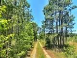 0 Sandy Creek Road - Photo 7