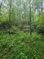 1696 Shade Tree Drive - Photo 11