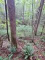 1696 Shade Tree Drive - Photo 12