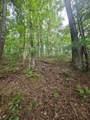 1696 Shade Tree Drive - Photo 16