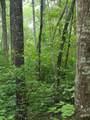 1696 Shade Tree Drive - Photo 18