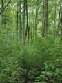 1696 Shade Tree Drive - Photo 20