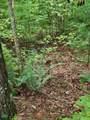 1696 Shade Tree Drive - Photo 21