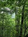1696 Shade Tree Drive - Photo 5