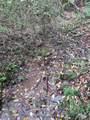 1696 Shade Tree Drive - Photo 7