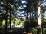 0 Old Birch Bend Court - Photo 12
