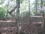0 Old Birch Bend Court - Photo 5
