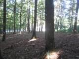 0 Old Birch Bend Court - Photo 7