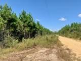 0 Livingston Towns Road - Photo 40
