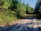 0 Livingston Towns Road - Photo 53