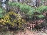 269 Cox Woodland - Photo 3