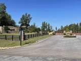1041 Bayside Drive - Photo 11